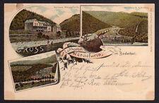 81653 AK Wendefurth Bodethal Hirsch Kurhaus 1898