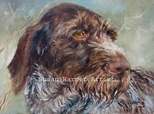 SALE German Wire-haired Pointer Signed Dog Print by Susan Harper Unmounted