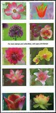 USA Sc. 5567a (55c) Garden Beauty 2021 MNH bklt. block of 10
