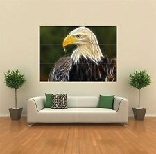 LIGHT EAGLE BIRD NEW GIANT POSTER WALL ART PRINT PICTURE G190