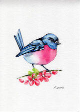 Bird, Blue, Pink, Illustration, Watercolor Original Painting Art, Quick sketch