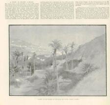 1890 - Antique Print SPAIN Valley San Rogue Tafira Grand Canary (203B)