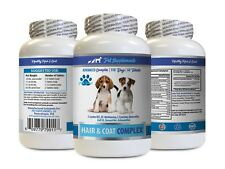 dog itching skin relief - DOGS HAIR AND COAT COMPLEX 1B - dog vitamins for coat