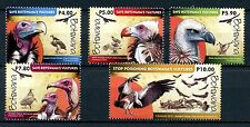 Botswana 2015 MNH Vultures 5v Set Birds Stamps