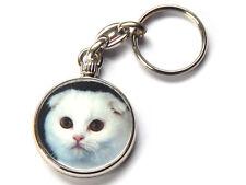 SCOTTISH FOLD Cat Kitten Quality Chrome Keyring Picture Both Sides