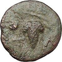 TEMNOS in AEOLIS 300BC Dionysus Grapes Authentic Ancient Greek Coin i46978