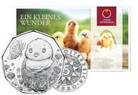 Österreich 5 Euro 2021 Küken - Ostermünze Silber handgehoben im Folder