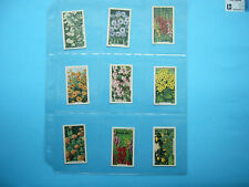 SET 48 1938 GALLAHER LIMITED VIRGINIA HOUSE GARDEN FLOWERS TRADING CARDS NICE!!