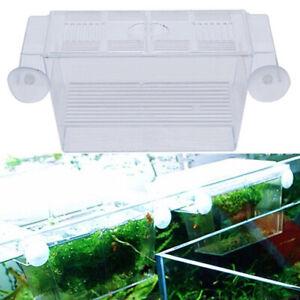 Aquarium Fish-Tank Guppy Double Breeding Breeder Rearing Trap Box Hatcher Case