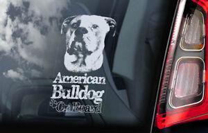 AMERICAN BULLDOG Car Sticker, Bully Dog Pet Window Sign Bumper Decal Gift - V05