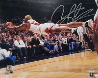 Bulls Dennis Rodman Signed Authentic 11X14 Diving Photo Autographed PSA/DNA