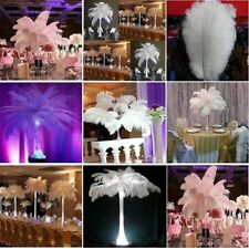"""New 10 PCS Wholesale Quality Natural Ostrich Feathers """"12-14"""" Inch White Color"""