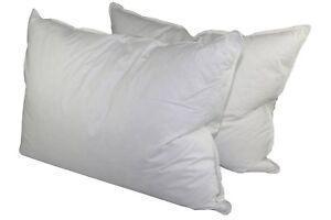 Manchester Mills Down Dreams Medium Firm Queen Pillow 2 Pillow Set