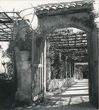 NICE c. 1935 - Cimiez Pergola du Jardin du Monastère Alpes-Maritimes - Div 4310