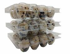 100 Quail Egg cartons for posting