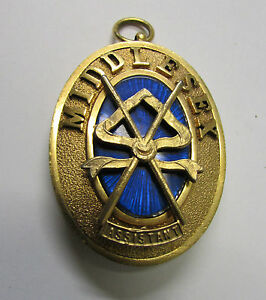 1955 PGSW 9kt Gilt and Enamel Oval Masonic Pendant ~ Middlessex, England
