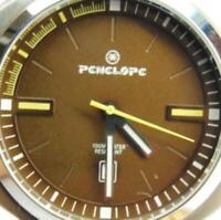 Penelope Watch Brown WR100m Mineral Glass AllSS Date Glo Quartz New Batt Run Men