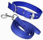 Dog Neck Collar Belts and Leash Set Medium Size dog Blue
