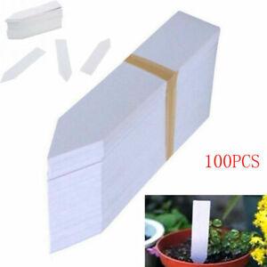 100x White Plastic Plant Labels Pot Tags Stakes Markers Nursery Etiquetas