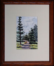 Southwestern Mountain Pines, Original Watercolor by Vivian Ashcraft
