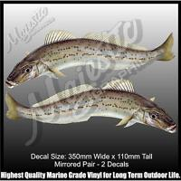 KING GEORGE WHITING - 350mm x 110mm - MIRRORED PAIR - BOAT DECALS