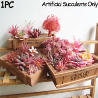 Plants Wall Bonsai Artificial  Leaves Red Succulents Flocking Flower Fake Grass