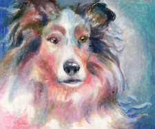 Aceo Border Collie Colored Pencil on 125gsm bristol paper