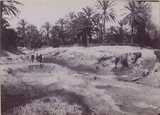 Maghreb Algérie TunisieVintage citrate ca 1900