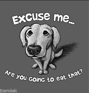 Excuse Me Dog T-shirt S M L XL 2XL You Going to Eat That Cotton Gildan NWT