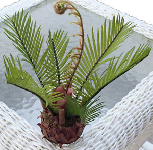 "VINTAGE POTTERY BARN ARTIFICIAL SMALL SAGO PALM 9.5"" TALL REALLOOKING HOME DECOR"