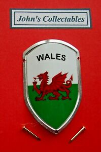 COLLECTABLE WALES WALKING / HIKING STICK BADGE  / MOUNT  LOT M NEW IN PACKET