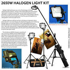 Photography Halogen Studio Photo Lighting 2650W Light Kit W/ Boom
