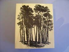 100 PROOF PRESS RUBBER STAMPS MATURE TREE GROVE STAMP