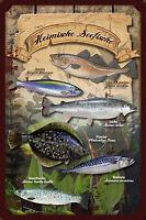 Heimische Seefische Fische Blechschild Schild gewölbt Metal Tin Sign 20 x 30 cm