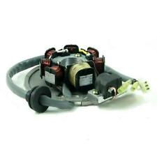 Lichtmaschine ATU Spin CPI Aragon Oliver Generic Keeway Tauris 50 Stator 6-polig