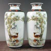 Chinese exquisite porcelain hand-painted vase  890406