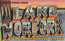 LAKE NORFORK Ozarks Arkansas-Missouri Large Letter Linen ca 1940s Postcard