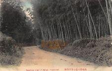JAPAN VERY RARE! 1900's Bamboo Road of Mogi at Nagasaki, Japan - EARLY POSTCARD