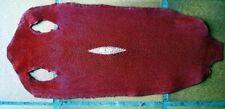 PEAU DE RAIE GALUCHAT rouge carmin , Taille 4 longue 31 x 11 cm