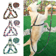 Printed Step In Dog Harness and Leash Adjustable for Pets French Bulldog Yorkie