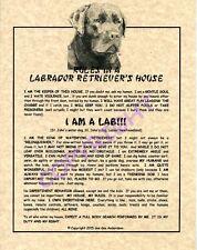 Rules In A Labrador Retriever's House