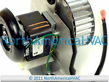 OEM Carrier Bryant Payne Inducer Motor 310371-751 Furnace HC23UE121 P251-2916