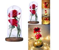 Rose en soie Rouge sous Dôme verre Double Fleurs éternelles Décoration Intérieur