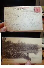 Western Australia 1d Swan on 1906 PPC to UK, message (41beg)