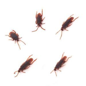 5 x Joke Cockroach Bug Funny Prank Novelty Life Like Fake Plastic Toy Trick NEW