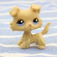 Littlest Pet Shop LPS #1194 Cream Yellow Collie Dog Puppy Blue Eyes Kids Toy New