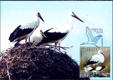 Estonia White Stork Ciconia Ciconia Estonia Mint Maxi FDC 2004