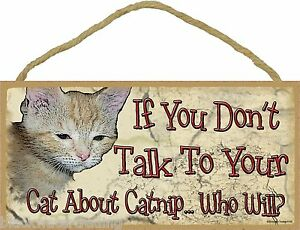 """If You Don't Talk To Your Cat About Catnip Who Will? Funny Cat Kitty Sign 5X10"""""""