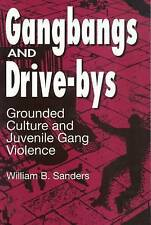 Gangbangs and Drive-Bys: Grounded Culture and Juvenile Gang Violence (Social Pro