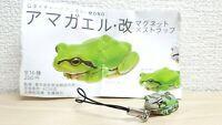 Kitan Club Nature Techni Colour JAPANESE TREE FROG green/grey animal figure